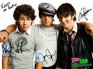 jonas-brothers-298731.jpg