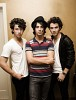 jonas-brothers-338828.jpeg