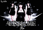 eisblume-441008.png