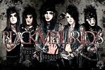 black-veil-brides-543539.jpg