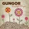 gungor-268605.jpg