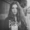 birdy-298387.jpg