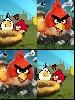 soundtrack-angry-birds-249211.jpg